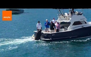 Sea lion enjoys lunch on back of fishing boat