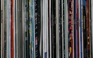 Bumper year for vinyl album sales