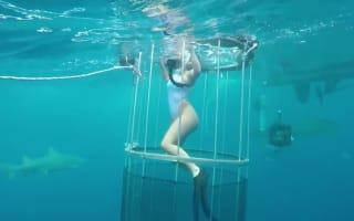 Shark attacks glamour model during underwater photo shoot