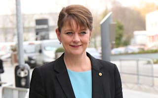 Plaid Cymru leader Leanne Wood: 'We have to defeat these pernicious Tories'