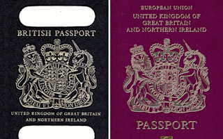 'Brexit Blue' passports could make a comeback after demands by Tory MPs