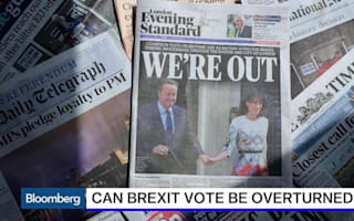 EU referendum: Should there be a second vote?