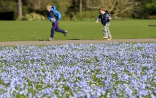 """UK weather: """"Tropical air"""" treats Britain to mild weekend"""