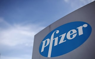 Jobs 'sole interest' in Pfizer bid