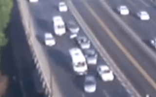 Motorist brakes for seagull, causes motorway pile-up