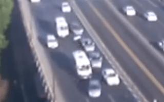 Motorist brakes for seagull, causes motorway pile-up