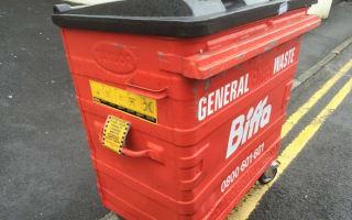 Overzealous parking attendant tickets wheelie bin