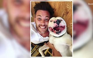 Police say rescued dog in viral photo must go