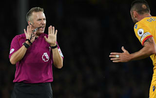 Everton profited from 'harsh' refereeing, claims Delaney