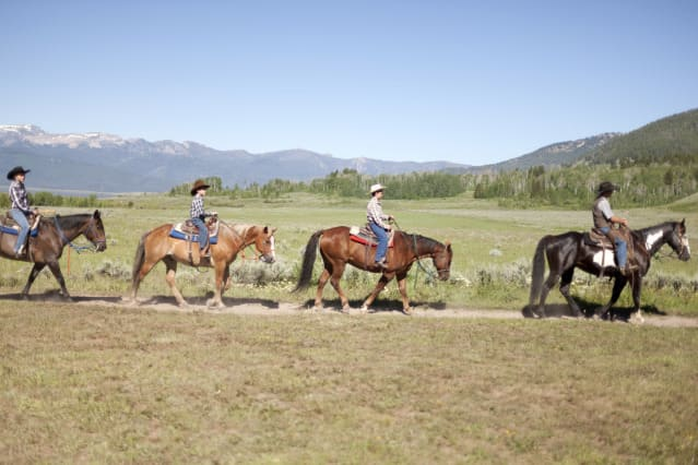 Ride with a real-life horse wrangler in America