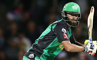 Quiney heroics help super Stars overcome Paine
