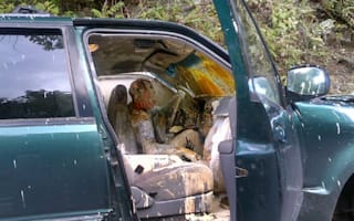 Driver and dog covered in paint after particularly messy crash