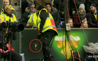 Dead rats hurled at Copenhagen players during Brondby clash