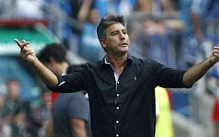 Gremio sanctioned after coach's daughter invades pitch