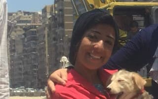 Puppy in Egypt rescued after 25 days trapped under rocks