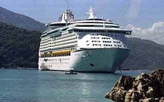 Cruise ship passenger disappears overboard