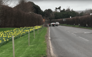 Police investigate after Ferrari driver almost causes huge accident