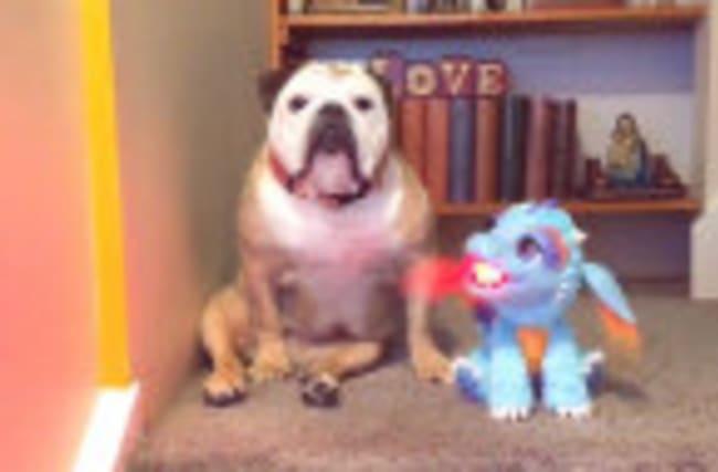 Khaleesi the Bulldog and her dragon friend