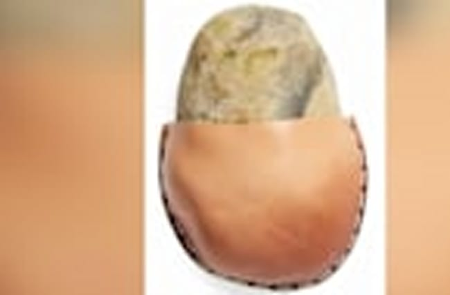 Consumers Troll Nordstrom Website Selling $85 Rock