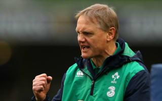 Schmidt praises speed of Ireland 'evolution'