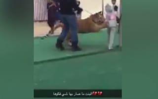 Tiger attacks little girl in Saudi Arabia