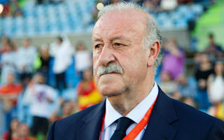 Spain loss does not change anything ahead of Euro 2016, says Del Bosque
