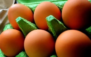 Eggs safe to eat past 'best before'
