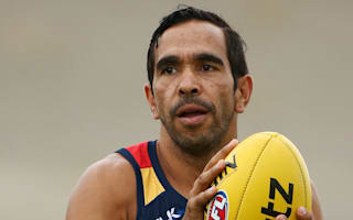 AFL's indigenous players call for end to 'racial vilification'