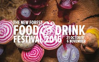 Win! A break for two to the New Forest Food &amp&#x3B; Drink Festival