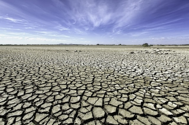Nos lo estamos cargando todo: Australia registra el invierno más caliente de su historia