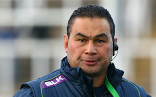 Lam backs Schmidt to continue with Ireland