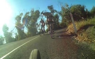 Kangaroo almost takes out cyclist in near-miss