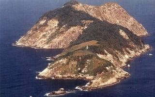 Island off Brazil home to 'world's deadliest snake' that melts human flesh