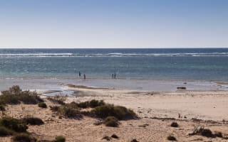 Fisherman survives six hours stranded in Australian sea