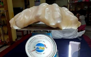 £76m pearl stashed under bed for ten years