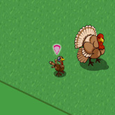 FarmVille Cheats & Tips: A Tale of Two Turkeys