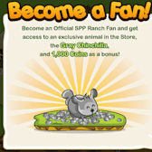 SSP Ranch! dares you to want a Chinchilla