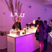 Xbox 360 swanky soiree shows off new games, mini burgers