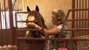  As a professional barrel racer, Brooke Jeter has to know her horses well, to be able to read every movement or hesitation. So when her new horse Whiskey wasn't moving wi...