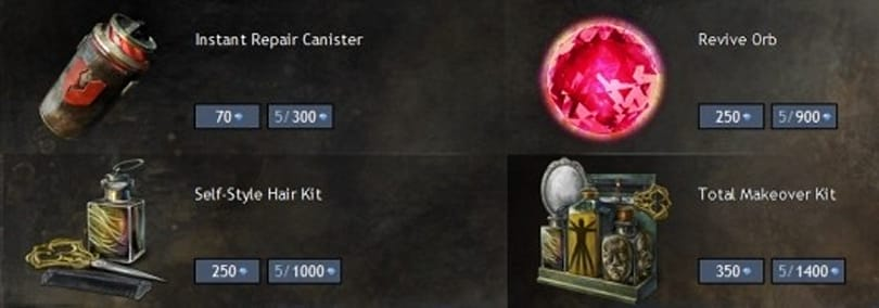 Guild Wars 2 sells makeovers, explains authenticator issue