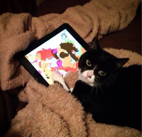 YouTube Find: Animals go insane over the iPad
