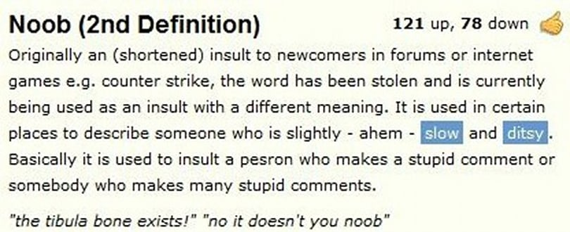 Noob could be millionth English word