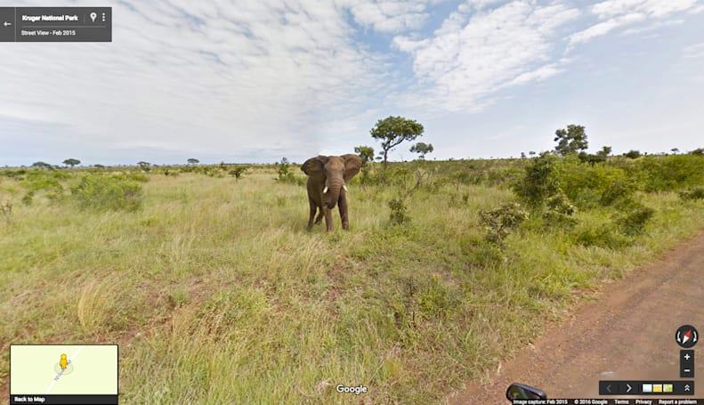 Google Street View takes you on a South African safari