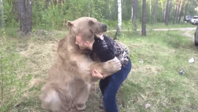 Man Play Wrestles With Bear In Russia