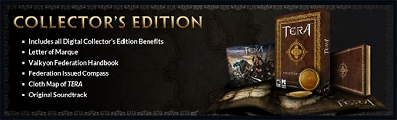 En Masse 'communicating directly with retailers' over TERA pre-order blunders