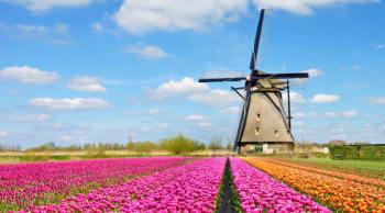 Tutti i treni elettrici in Olanda ora sfruttano per il 100% l'energia eolica