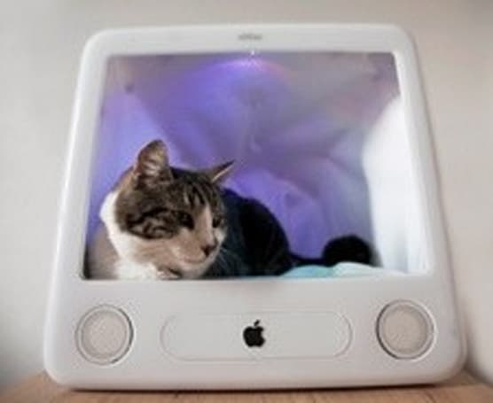 eMac converted to self-tweeting cat bed