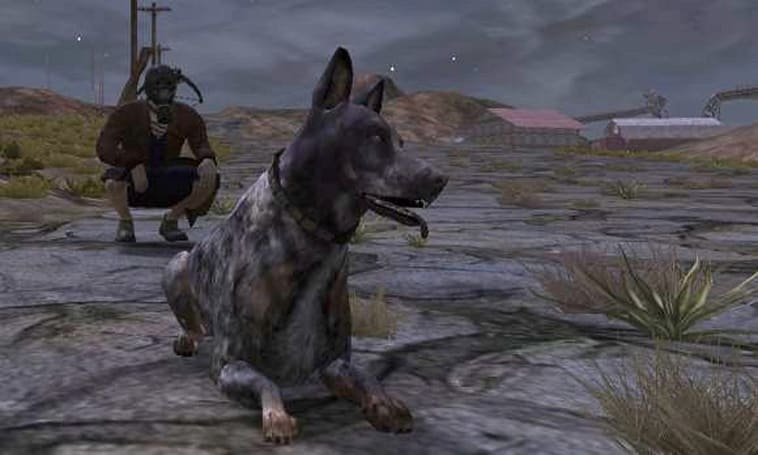 Fallen Earth lets the dogs out