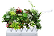 Sensor-equipped plant pods take the guesswork out of indoor gardening