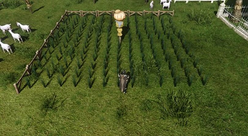 XL releases offline farm monitor for ArcheAge